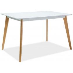 Jídelní stůl DECLAN I 120x80 bílá/buk