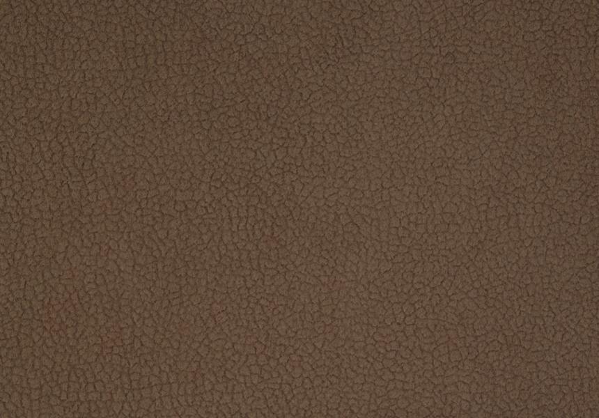 Carabu marrone 57