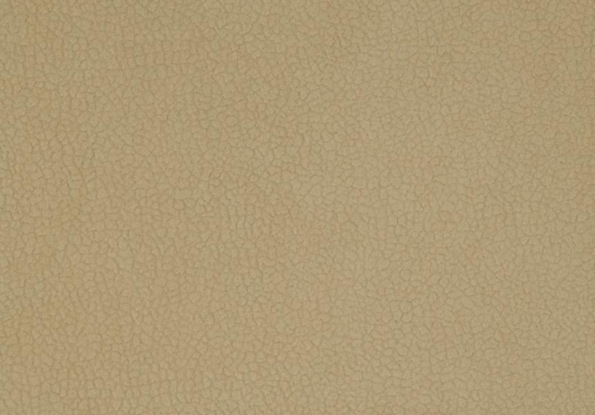 Carabu beige 66