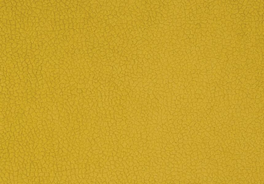 Carabu giallo 131