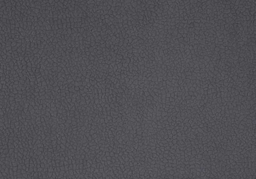 Carabu grigio 77