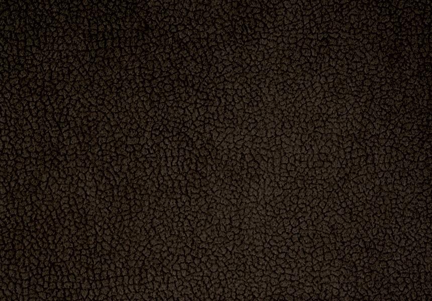 Carabu marrone 137