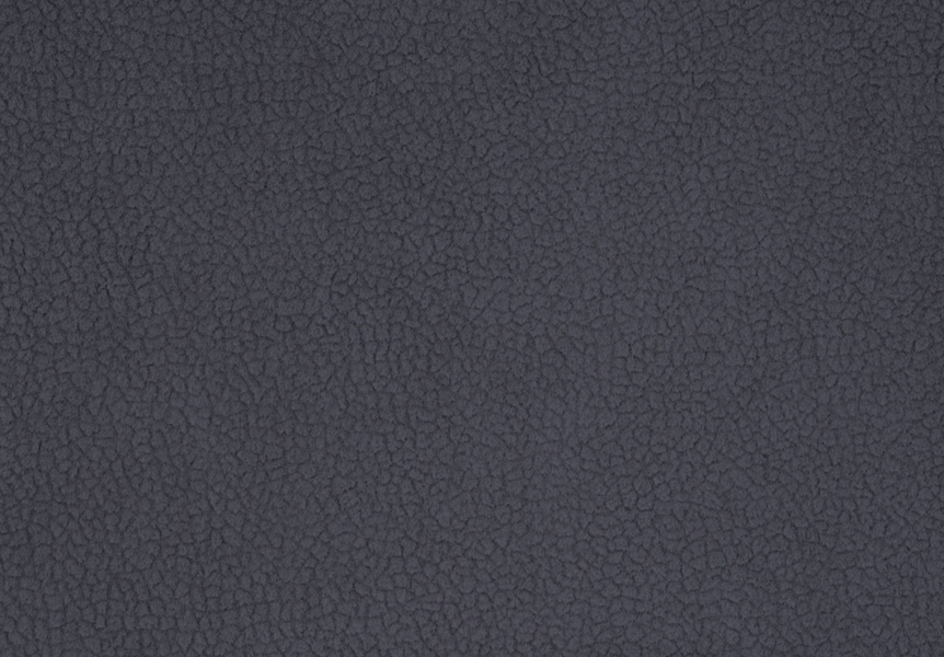 Carabu grigio 110